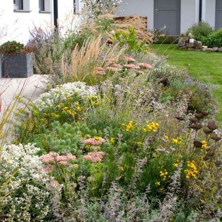 Staudenbepflanzung Gartengestaltung Hertl In 2020 Bepflanzung Gartengestaltung Privatgarten