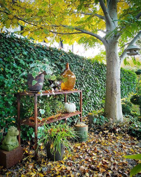 146 gilla-markeringar, 8 kommentarer - Camilla Knekta (@c.knekta) på Instagram: Hösten pågår, vädret är ljumt och trädgårdsfix stundar 🍂 Möjligheten att kunna kliva ut i min egen…