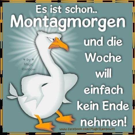 Guten Morgen Grüße Montag Beste Montag Sprüche Kostenlos