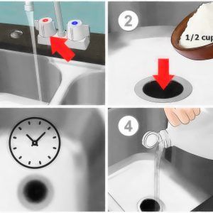 Best Way To Unclog A Kitchen Sink With Garbage Disposal Unclog