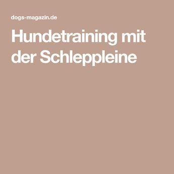 Hundetraining Mit Der Schleppleine Hundchen Training