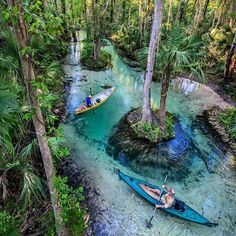 15 Surreal Places Near Tampa You Wont Believe Really Exist - Narcity