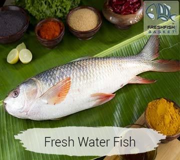 Fresh Fish Online Store Convenient Fast And Inexpensive Fresh Fish Fish Freshwater Fish