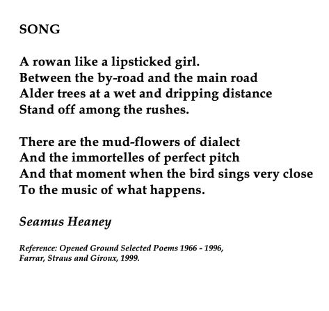Seamus Heaney, Song
