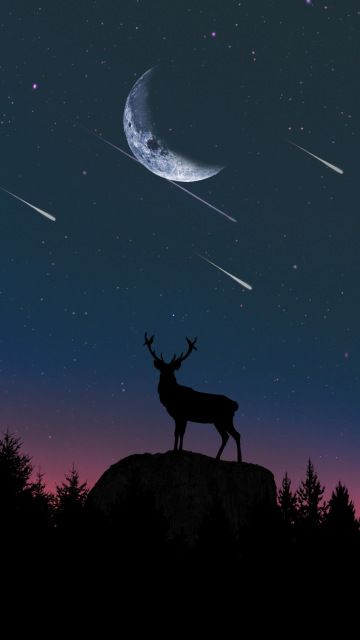 Deer With Moon Night