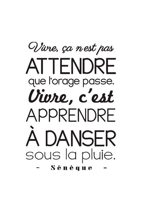 Vente STICKERS / 24345 / Lettrage / Citations en français / Sticker citation Sénèque Noir