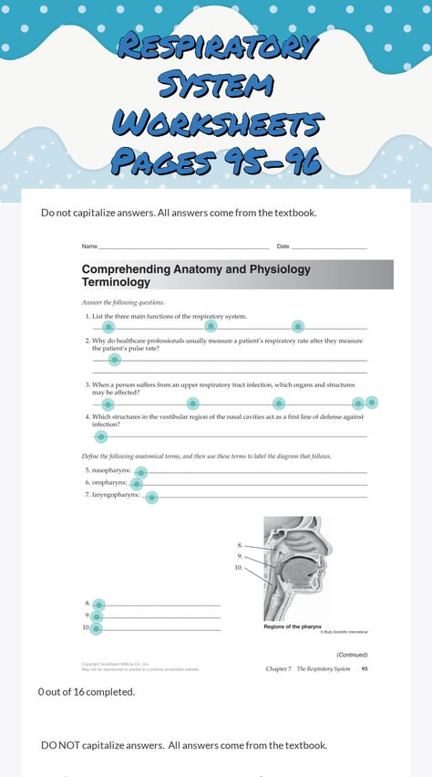 Atractivo Comprehending Anatomy And Physiology Terminology Worksheet ...