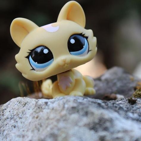 This lps is one of my dream pets I wish I had this lps :)
