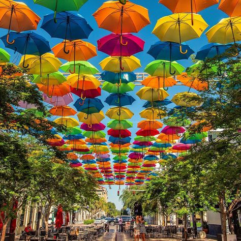 The City of Coral Gables has unveiled the Umbrella Sky Project colorful art installation to create shade in public spaces in Giralda Plaza.