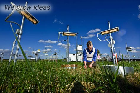 We Grow Ideas