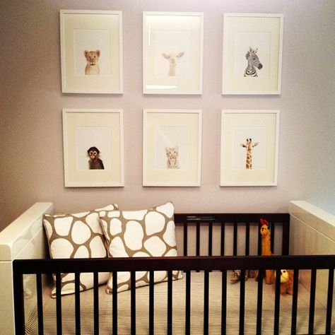 Project Nursery - Animal Prints from The Animal Print Shop