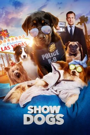 Pin Oleh Matyasalmeyda Di Download Movies In Hd Bioskop Dog Show Film