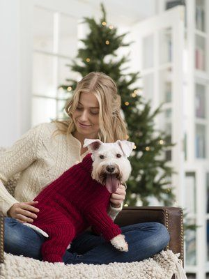 Neulottu Koiran Nuttu Dog Sweater Crochet Pattern Yarn Clothes Crochet Dog Sweater