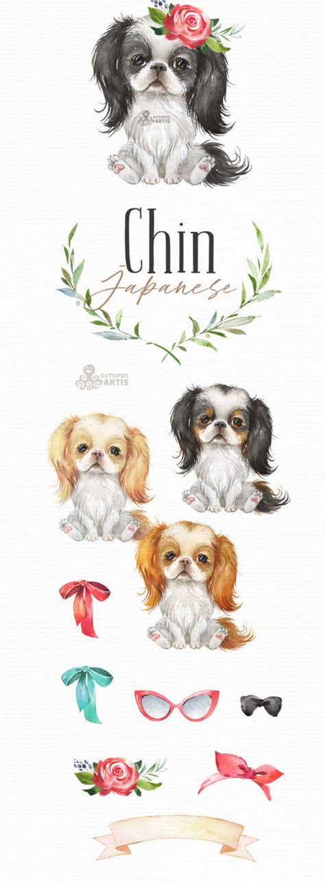 Japanese Chin. Watercolor little dog clipart spaniel | Etsy