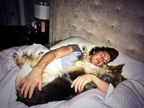 Washington Capitals: TJ Oshie taking a nap with his