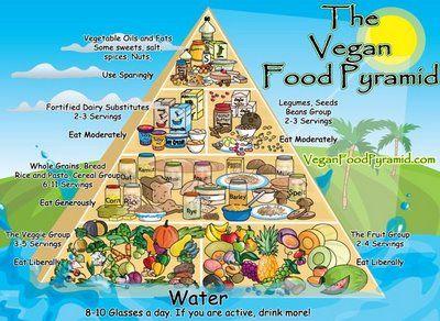 Six Tips: How to Go Vegan or Vegetarian in 2009
