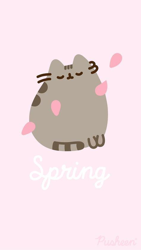 17 Trendy Wall Paper Cat Kawaii Phone Wallpapers Pusheen Cat Pusheen Cute Pusheen Background cute wallpapers cats