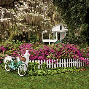 Easy-Growing Flowers for Fences   Easy Growing   SouthernLiving.com