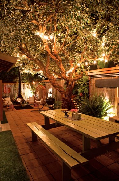 Tree Focal Point - would love this in my backyard