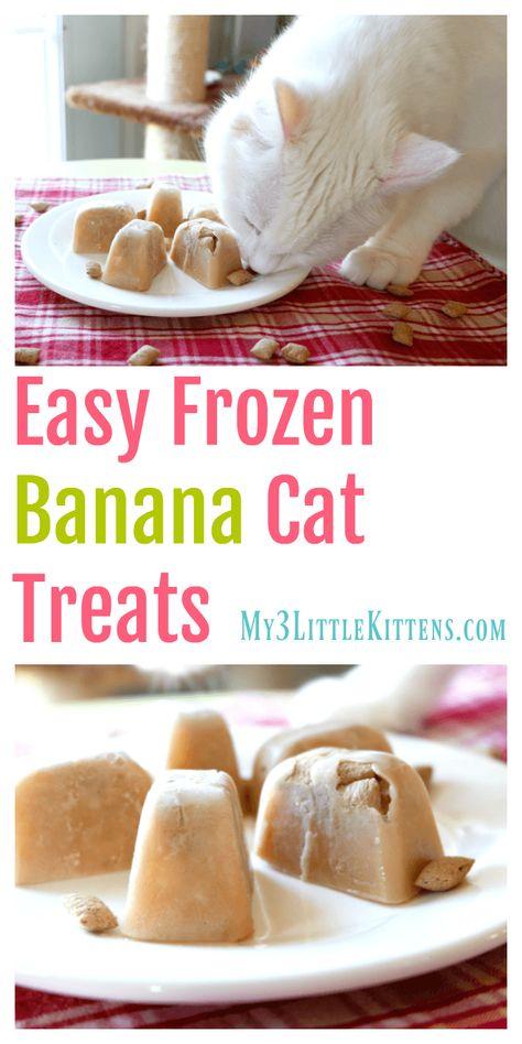 Easy Frozen Banana Cat Treats - My 3 Little Kittens