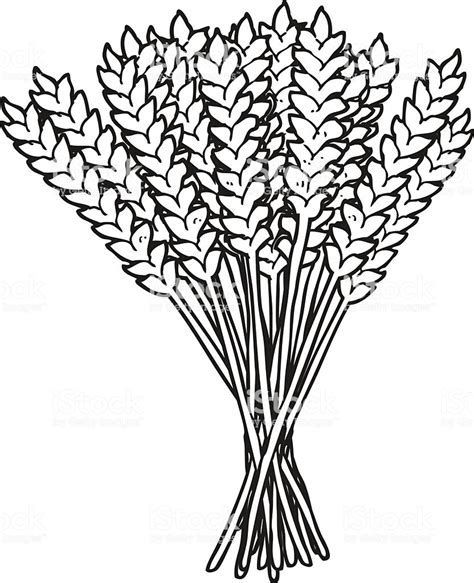 Image Result For Black And White Wheat Bundle Clipart Wheat Bundle Black And White Clip Art