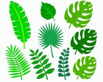 41+ Jungle leaves clipart black and white information