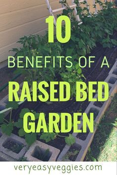 Looking For Vegetable Garden Ideas Find Out Why Raised Bed