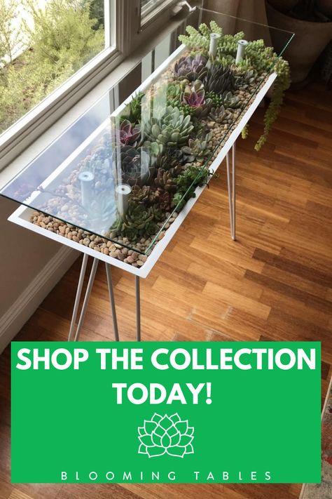 Indoor Garden, Indoor Plants, Outdoor Tables, Outdoor Decor, Backyard, Patio, Interior Exterior, Plant Decor, Innovation Design