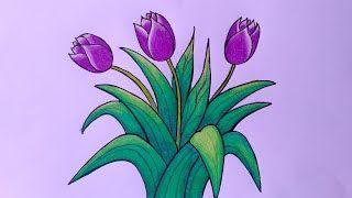 Gambar Bunga Tulip Mewarnai Kumpulan Gambar Bunga Menggambar Bunga Menggambar Bunga Matahari Cara Menggambar