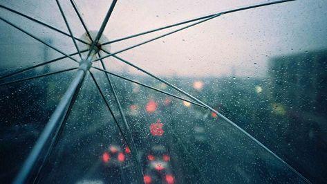 Spring Rain Umbrella Wallpapers