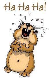 lustiges Bild 'ha ha ha.gif' von Edith. Eine von 61029 Dateien in der Kategorie 'Lustiges' auf FUNPOT. (Best Friend)