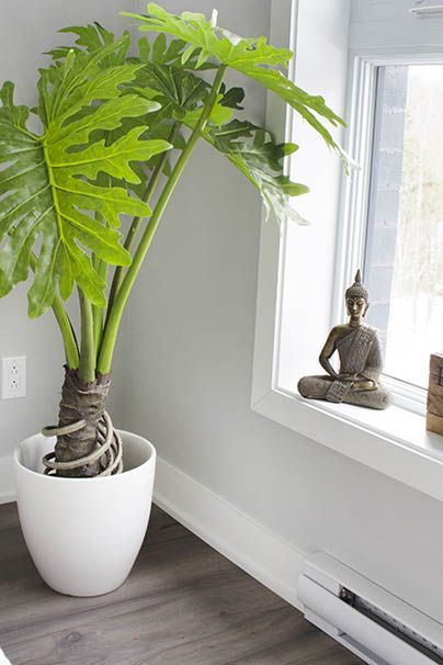 19 Beauteous Indoor Artificial Plants