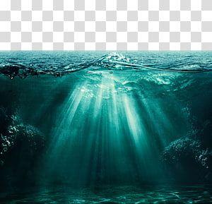 Selective Focus Body Of Water Light Ocean Underwater Deep Sea Beautiful Ocean Views Of The Ocean Trans Ocean Underwater Ocean Illustration Underwater Drawing