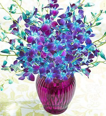 21 Beautiful Ocean Breeze Orchids Bouquet Weddingtopia Orchid Bouquet Flower Delivery Orchids