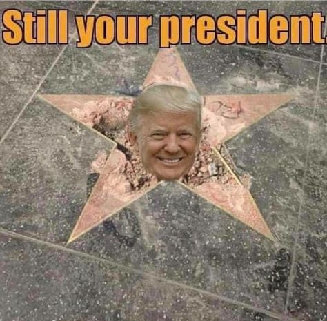 Hollyweird wishes it was that easy . Trump doesn't belong on Hollyweird walk of shame.