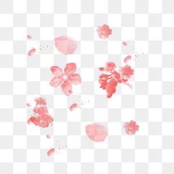 Petalas De Cereja Rosa Caindo Pink Cherry Petalas Caindo Cereja Imagem Png E Psd Para Download Gratuito Cherry Blossom Petals Rose Petals Falling Cherry Blossom Festival