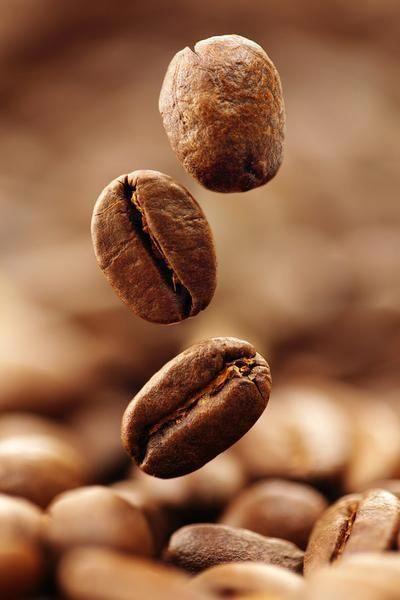 21 Awesome Coffee Bean Vanilla Powder Sugar Free In 2020 Fresh Roasted Coffee Coffee Beans Frozen Coffee