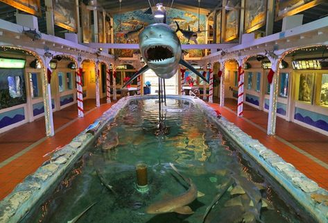 Old Town Manor & Rose Lane Villas are only blocks from the Key West Aquarium. This fun tourist attraction includes a touch tank, and if you go during feed time you'll help feed sharks and stingrays.