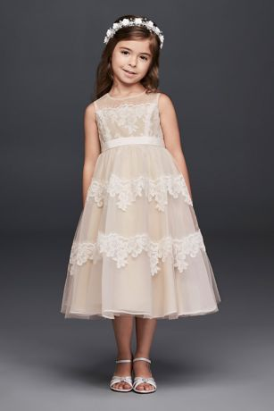 Bands Of Eyelash Lace Wrap The Bodice And Skirt Of This Tulle