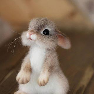 Baby Animals souvenirs from wool. Khabarovsk. (Natalia Derevschikova) ...