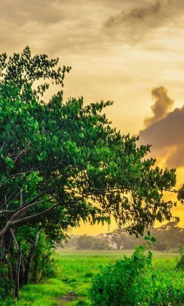 30 Gambar Pemandangan Alam Kartun Kumpulan Gambar Pemandangan Paling Berkesan Gambar Pemandangan Laut Kartun Yang Memukau Di 2020 Pemandangan Fotografi Alam Lanskap