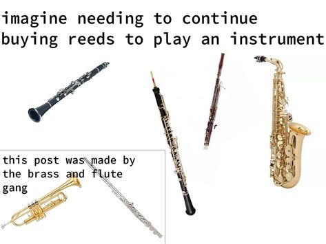 2019 has sure been interesting, but if there is one thing we can always count on, it's the internet to make memes happen no matter what. Here are some of our favorite music memes from 2019 Marching Band Jokes, Marching Band Problems, Flute Problems, Music Memes Funny, Music Jokes, Music Humor, Band Nerd, Music Mood, Love Band