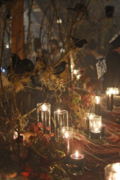 crow centerpieces for a Halloween wedding - photo by Birke Photography http://ruffledblog.com/enchanted-forest-halloween-wedding