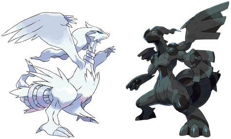 Reshiram Y Zekrom White And Black Ausmalbilder Pokemon Ausmalbilder Alle Pokemon