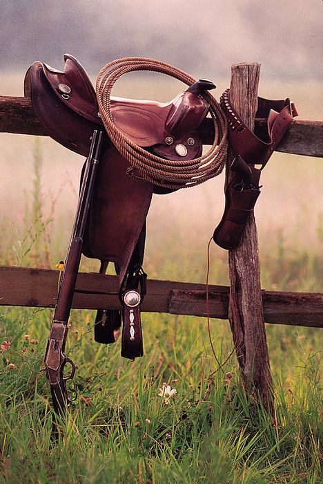 Saddle and lasso on fence