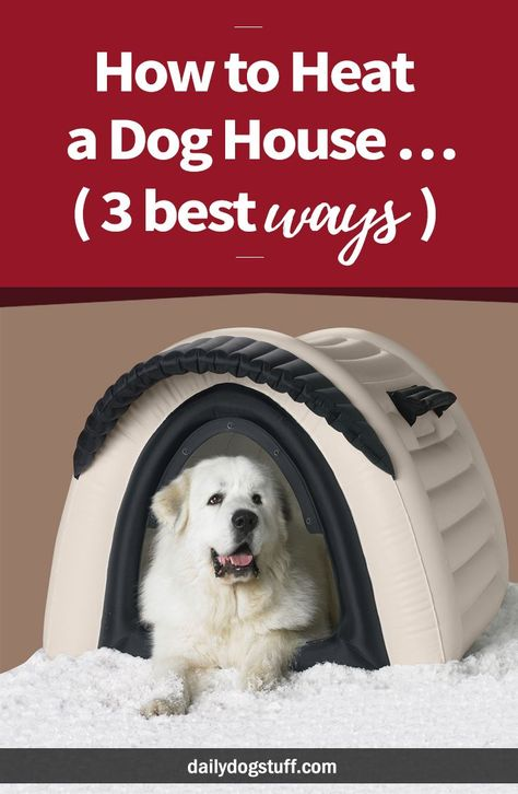 How To Heat A Dog House 3 Best Ways Warm Dog House Heated