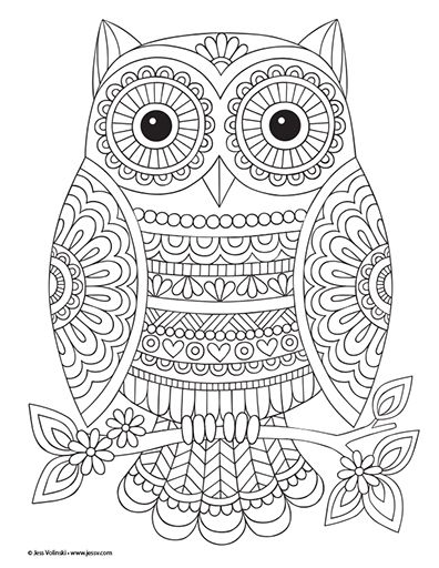 Colorful Inspirations Owl Coloring Pages Mandala Coloring Pages