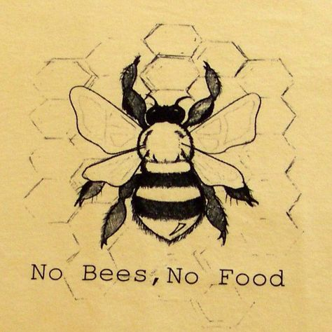 No Bees, No Food. I don't know about you but I prefer natural food as opposed to genetically engineered food.