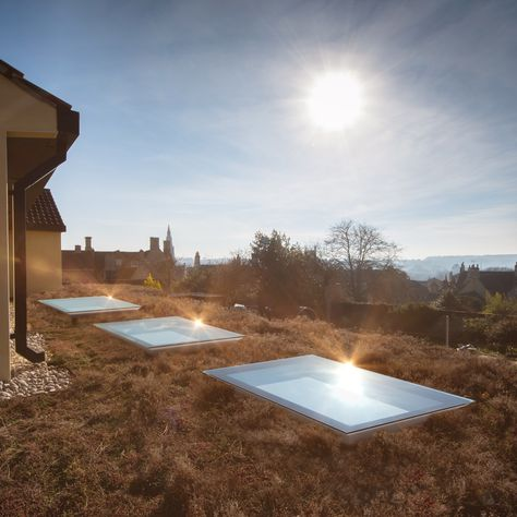 3 Contemporary Frameless Fixed Flat Rooflights On A Sedum Grass Roof Looks Stunning Please Go To Ofset Co U Flat Roof Extension Roof Architecture Roof Light