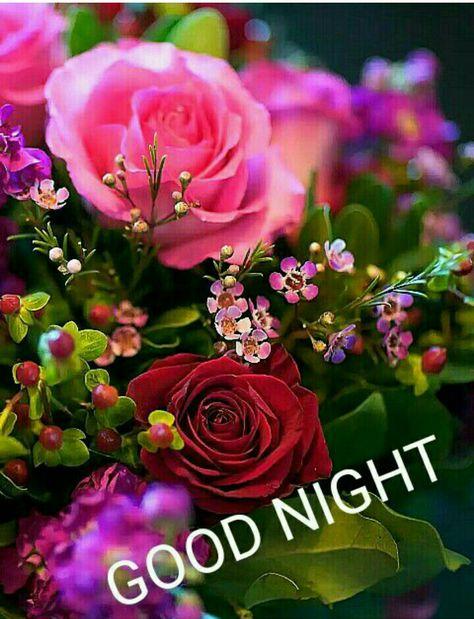 Gute Nacht Weibi